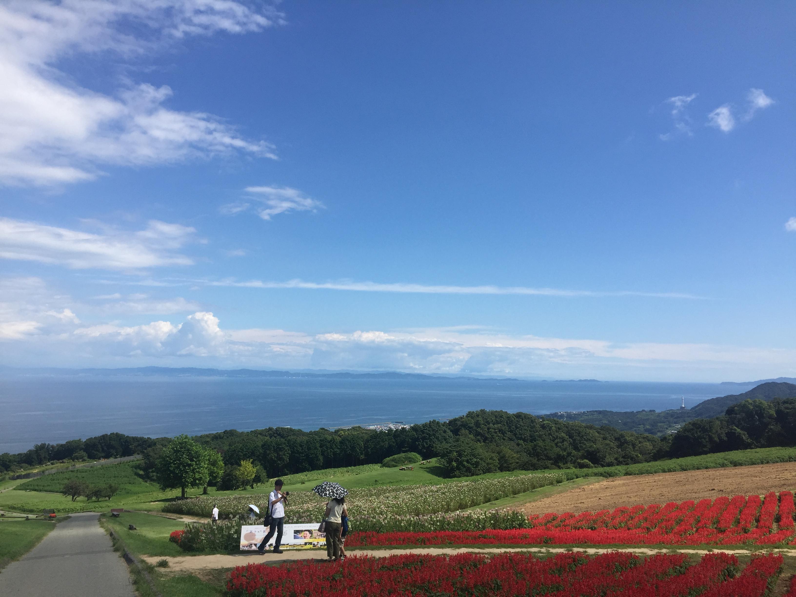 A flower garden on Awaji